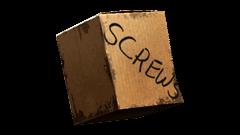 Screw * 100